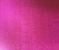 Rental store for Hot Pink Drape - 14  Tall in St. Louis MO