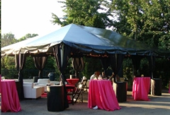 Rental store for Black Canopy Tents in St. Louis MO