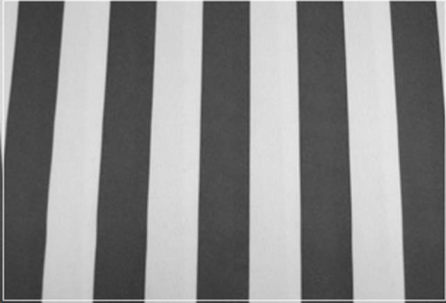 Where to find Black   White Wide Stripe in St. Louis